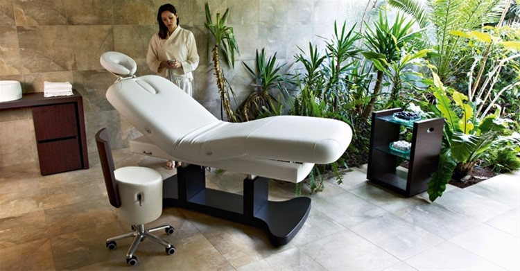 Spa-vip massage bed
